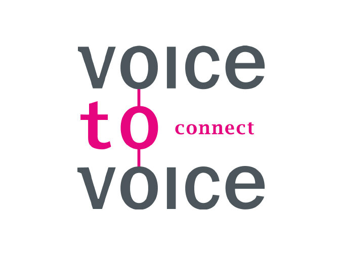 Voice to Voice - Lemmer